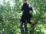 Sortie aux pommes 2005, 4